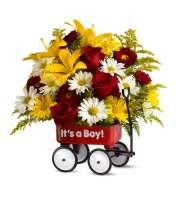 Babys First Wagon- Boy TF
