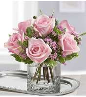 Sweet Sentiments™ Pink Roses