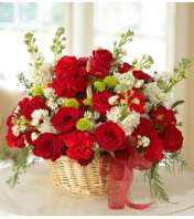 Mixed Basket Arrangement for Sympathy - Red