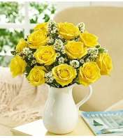 Pitcher Full of Roses, Yellow