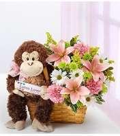 Lotsa Love® for New Baby Girl