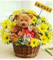 Lotsa Love® New Baby