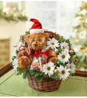 Lotsa Love® for Christmas Basket