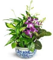 Sweet Memory Planter