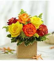 Autumn's Blooming Roses
