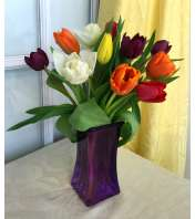 Tulips in Purple Square Vase