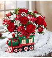 Christmas Express Train™