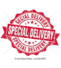 Re delivery or special Delivery charge