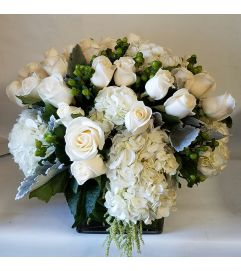 Winter White Roses
