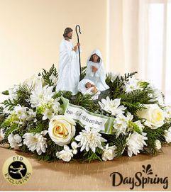 FTD DaySpring God