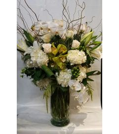 Winter White Bloom