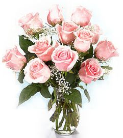 Classic Pink Roses
