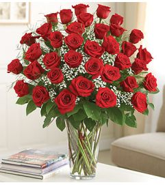 Premium Long Stem Red Roses
