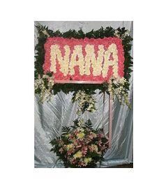 Nana [GF-SW2] $600.00