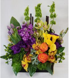 Zen Orchid Box