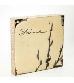 Shine Block