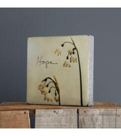 Hope Block