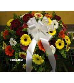 CC06-1050