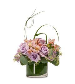 Lavender Melody
