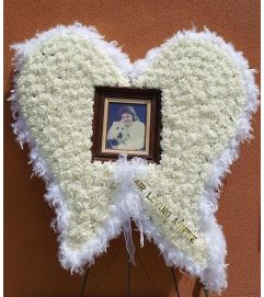Angel Wings with Frame