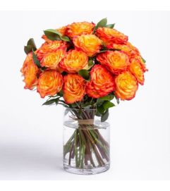 Circus rose vase