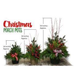 Evergreen Porch Pots