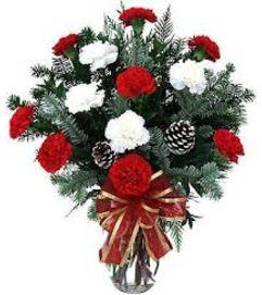 Carnations Vased