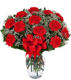 12 Red Carnations Arranged