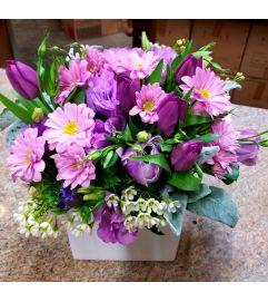 Sweet Spring Lavender