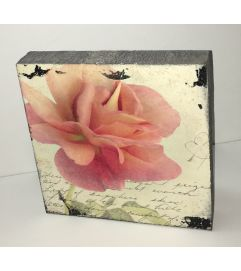 Salmon Rose Block Art