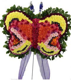Monarch Butterfly .