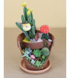 Garden of Clay