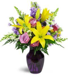 Sprightly Spring™