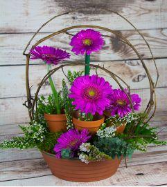 Axelrod Flowers Artisan Arrangement 11