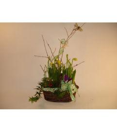 Basket of Daffodils
