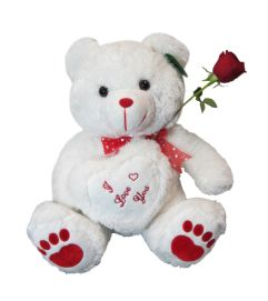 Medium Jumbo Teddy Bear white