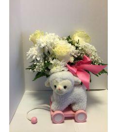 Sweet Baby Lamb, Pink