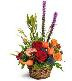 Pumpkin Patch Blooms™