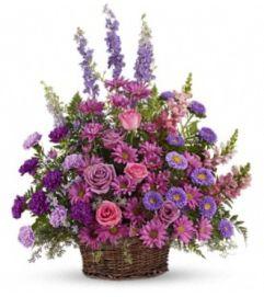 Stunning in Lavender