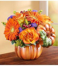 Pumpkin Petals™