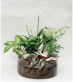 Mason Jar Dish Garden