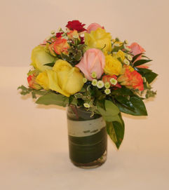 Rainbow Rose Delight