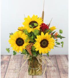 Sunflower Daydream