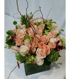 Sweet Peach Roses