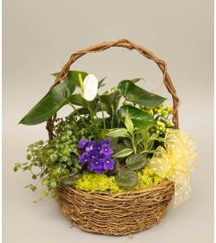Large Plant Garden Basket