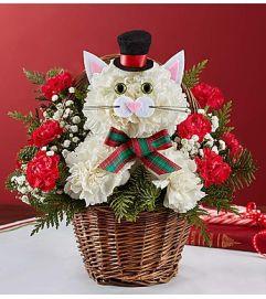 Christmas Caroling Cat™