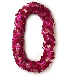 Adouble purple orchid Lei