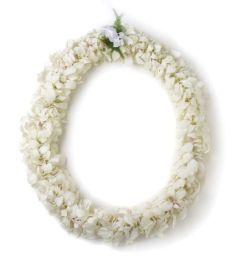 A Double White Dendrobium Hawaiian Lei