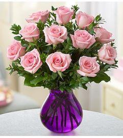 Rose Romance™ - Pink