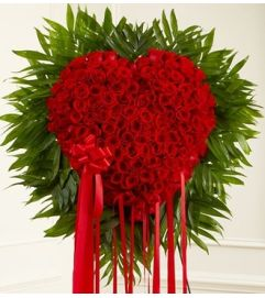 Red Rose Bleeding Heart